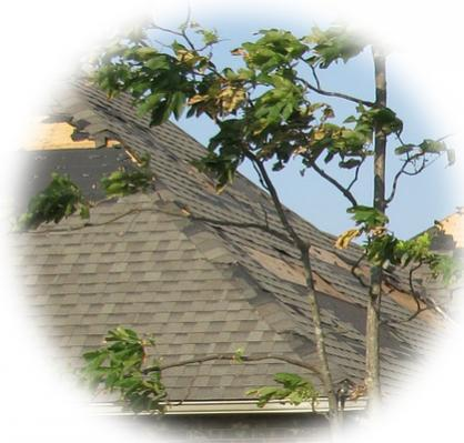 Spring Winds Can Damage Your Roof